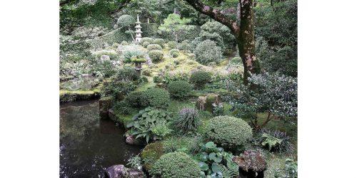 大原、三千院のお庭