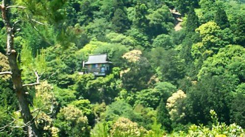 大河内(おおこうち)山荘庭園は