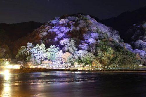 12月のおすすめライトアップBest3!