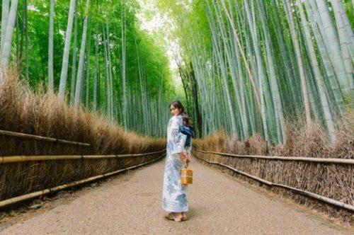 ベトナムトップ女優Kha Nganさんが御池別邸にご来店4