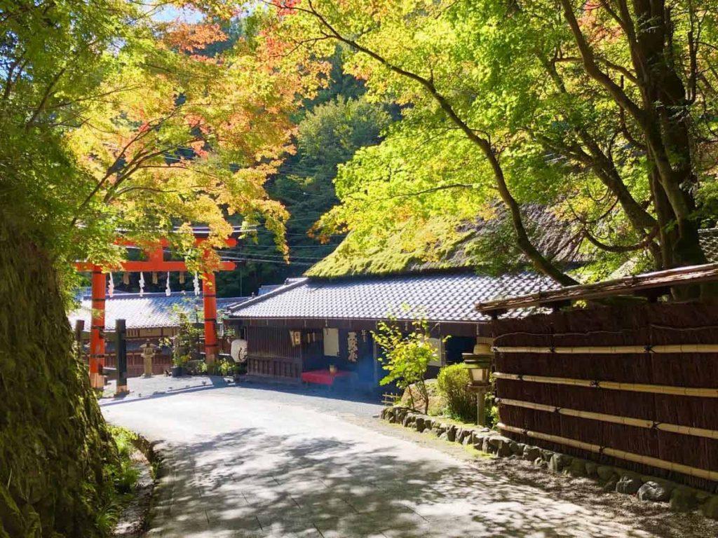 紅葉が始まりました。嵯峨鳥居本