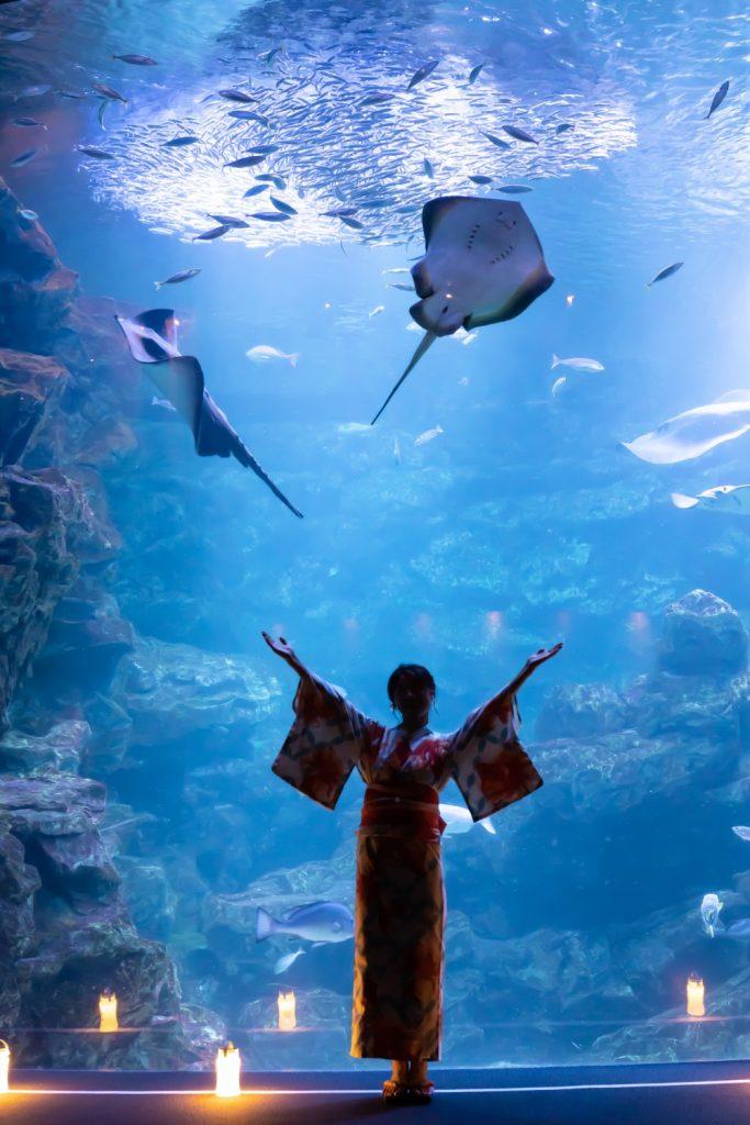京都水族館 京の海 夜のデート 夢館浴衣レンタル
