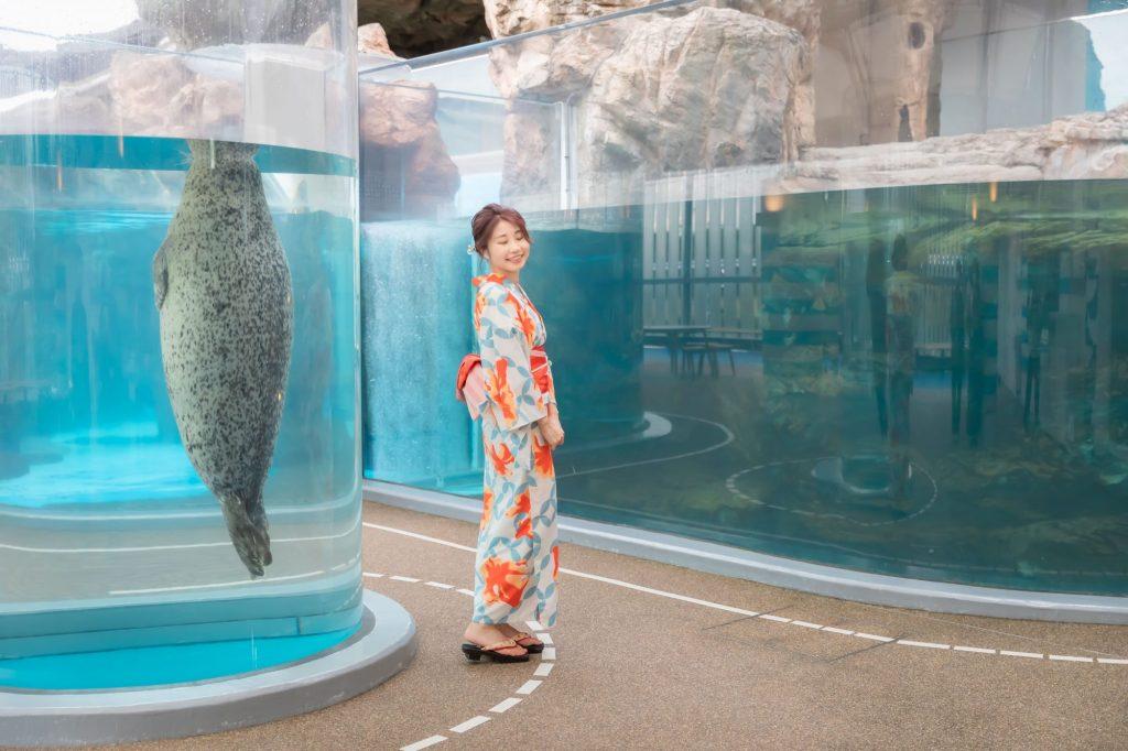 京都水族館で浴衣デート アザラシの水槽 夢館浴衣レンタル