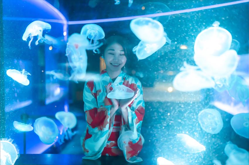 京都水族館 クラゲの水槽 夢館浴衣レンタル